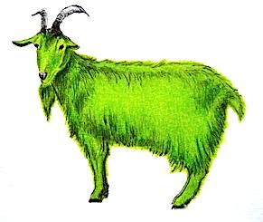 Cabra verde